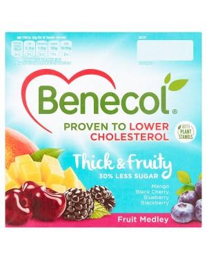 Benecol Fruit Medley Yogurt (6x4X120 G)